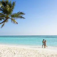 Meeru Maldives from R 30 190 pps