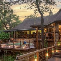 Madikwe River Lodge from R 4990 pppn